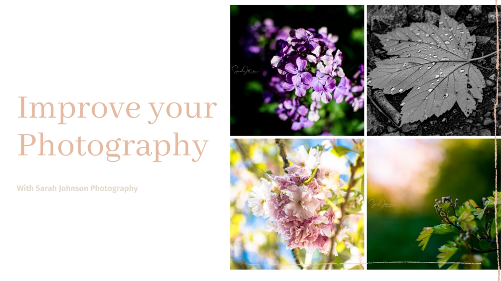 improve your photography, improve your imagery